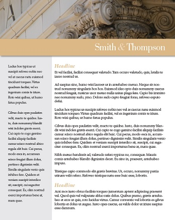 Law Firm Resume Sample Image